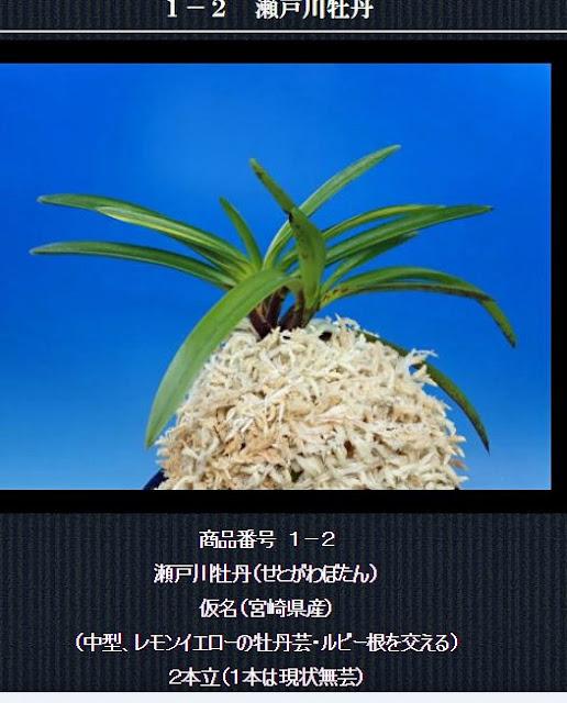http://www.fuuran.jp/1-2.html