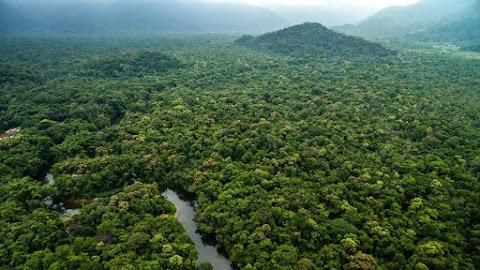 Videó készült az elzárt amazonasi törzsről