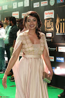 Actress Teju in Spicy Cream Backless Gown at IIFA Utsavam Awards 2017  Day 2  Exclusive 01.JPG