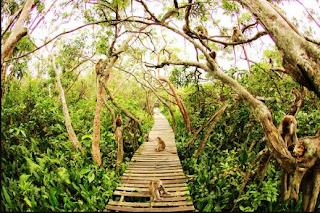 Wisata Pulau Kembang Yang Unik dan Asik