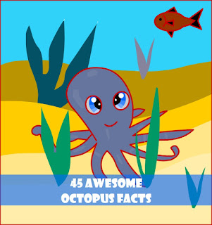 http://www.allfiveoceans.com/2016/02/octopus.html