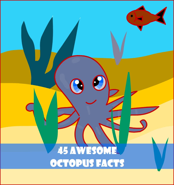cool octopus facts