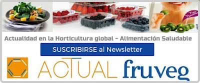 Suscripción Newsletters
