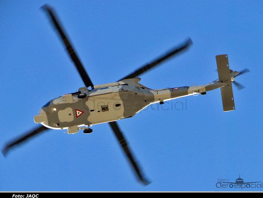 Black Hawk  de la FAM DSC03427