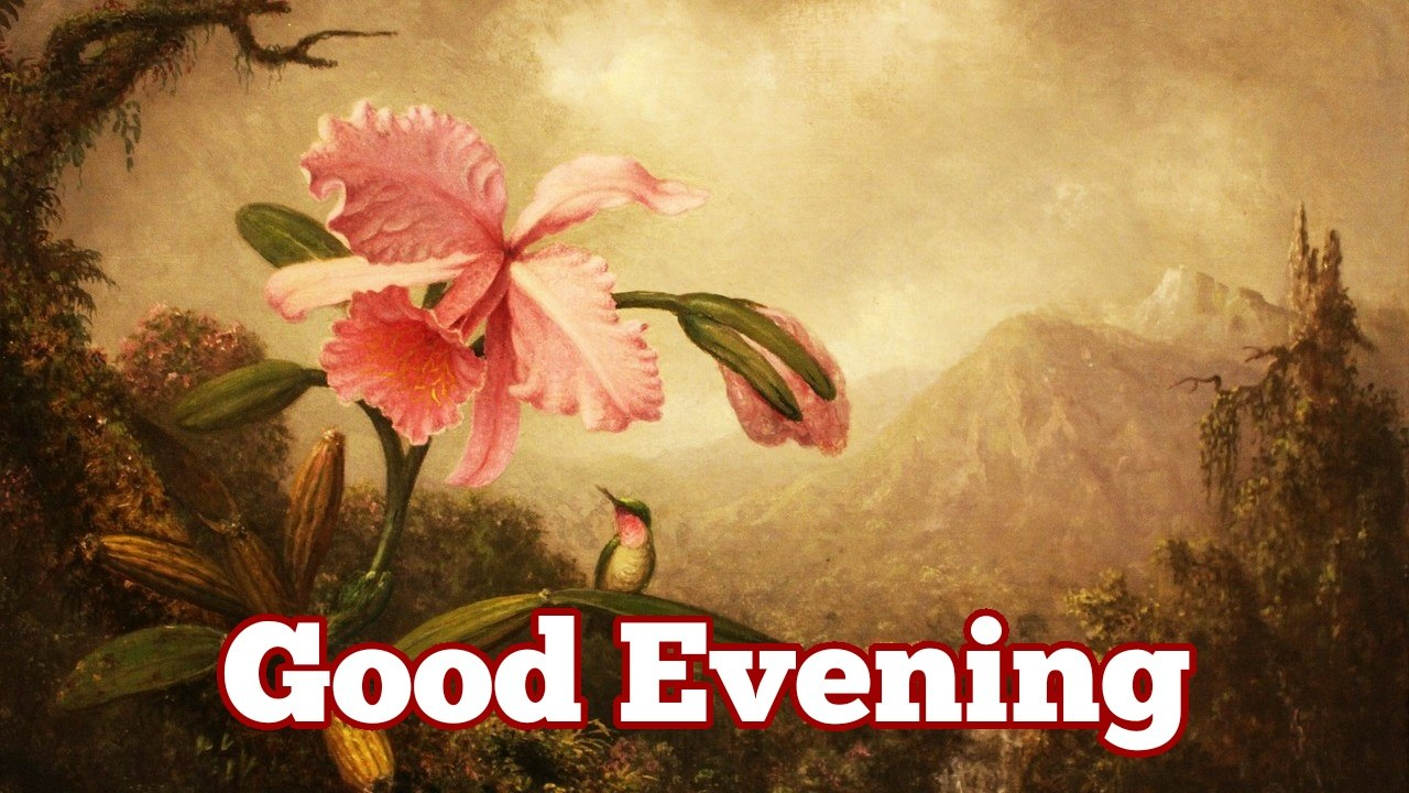 good evening in hindi