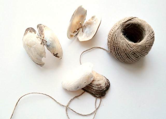 Twine Tied Sea Shell Gift Cases by Dana Tatar