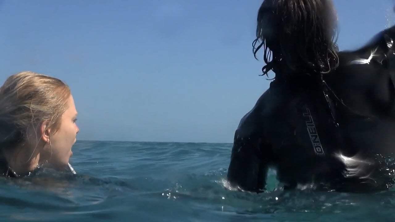 Mồi Cá Mập - Ảnh 2