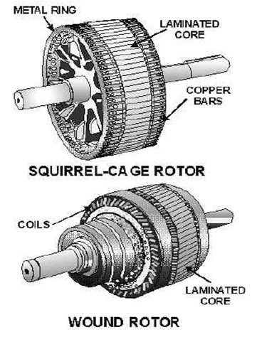 Rotor on Squirrel Cage Vs Wound Rotor Motor