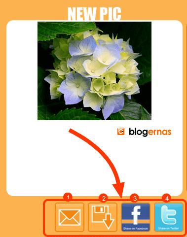 Cara Potong Gambar secara Online di Cut My Pic
