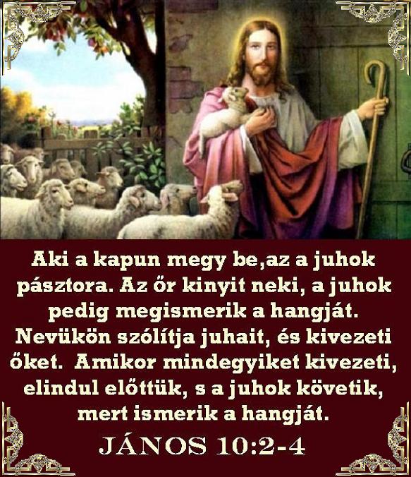 katolikus idézetek Katolikus jegyzetek: Evangéliumi idézetek