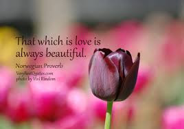 quotes about love: that which is love is always beautiful.