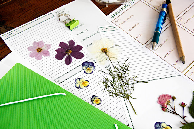 http://greeninreallife.blogspot.co.nz/2016/01/garden-journaling-and-planning-plus.html