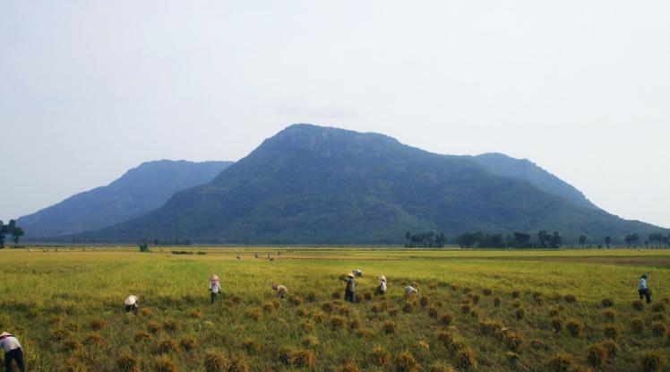 pemandangan sawah dan gunung Gunung Phnom Aural - 1.813 mdpl (Kamboja)