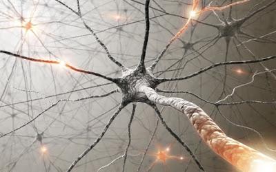 Οι Βάσεις της Ορθοδόξου Ψυχοθεραπείας Μητρ. Nafpaktos Diligence by Sophia Drekou