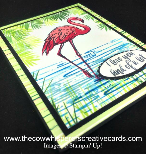 Card, Fabulous Flamingo, Tropical Escape, Stampin Up