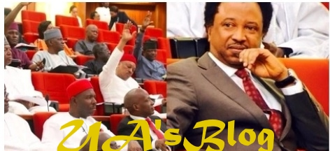 National Assembly, most unaccountable arm of government under Saraki – Sen. Sani