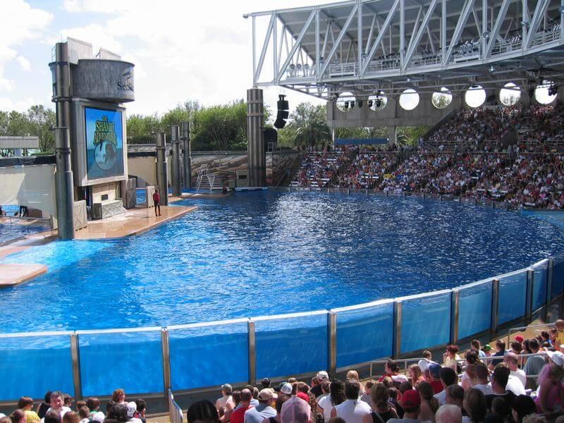 El seaworld orlando atracciones mi ba l de blogs for Como declarar una piscina en el catastro