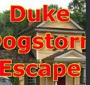 GelBold Duke Dogstorm Escape