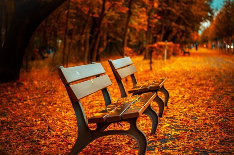Jesienna aura