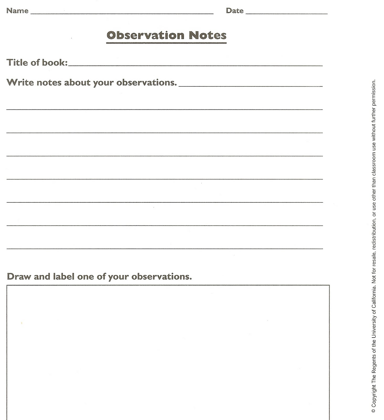 Scientific Observation Worksheet