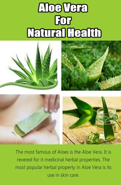 aloe vera for natural health