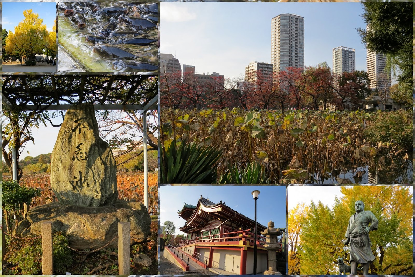 Areas of Tokyo city: the park at Ueno