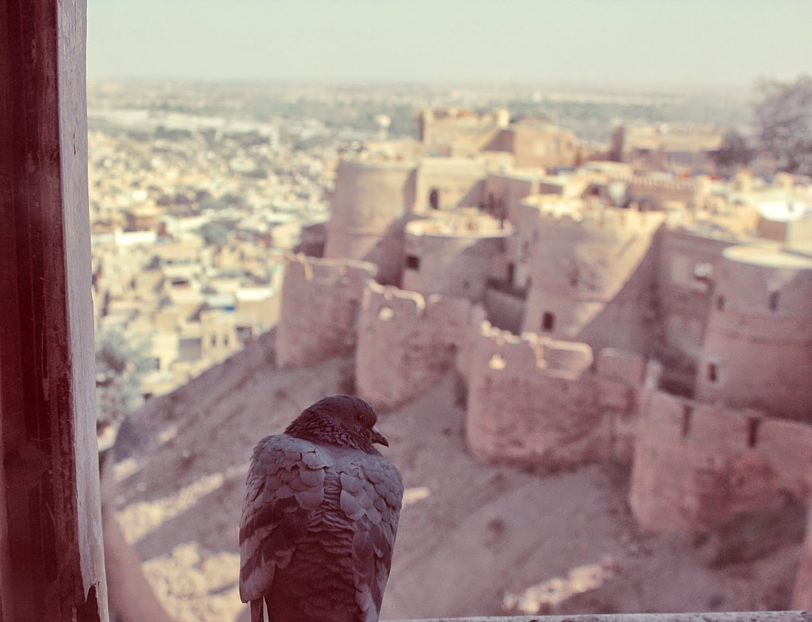 A view from a window at the Grand Fort of Jaisalmer