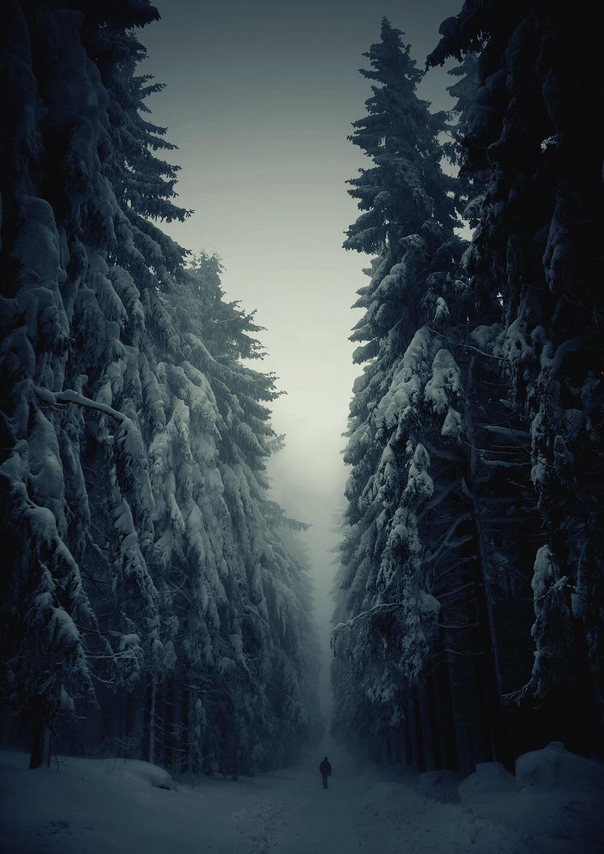 nature wallpaper download