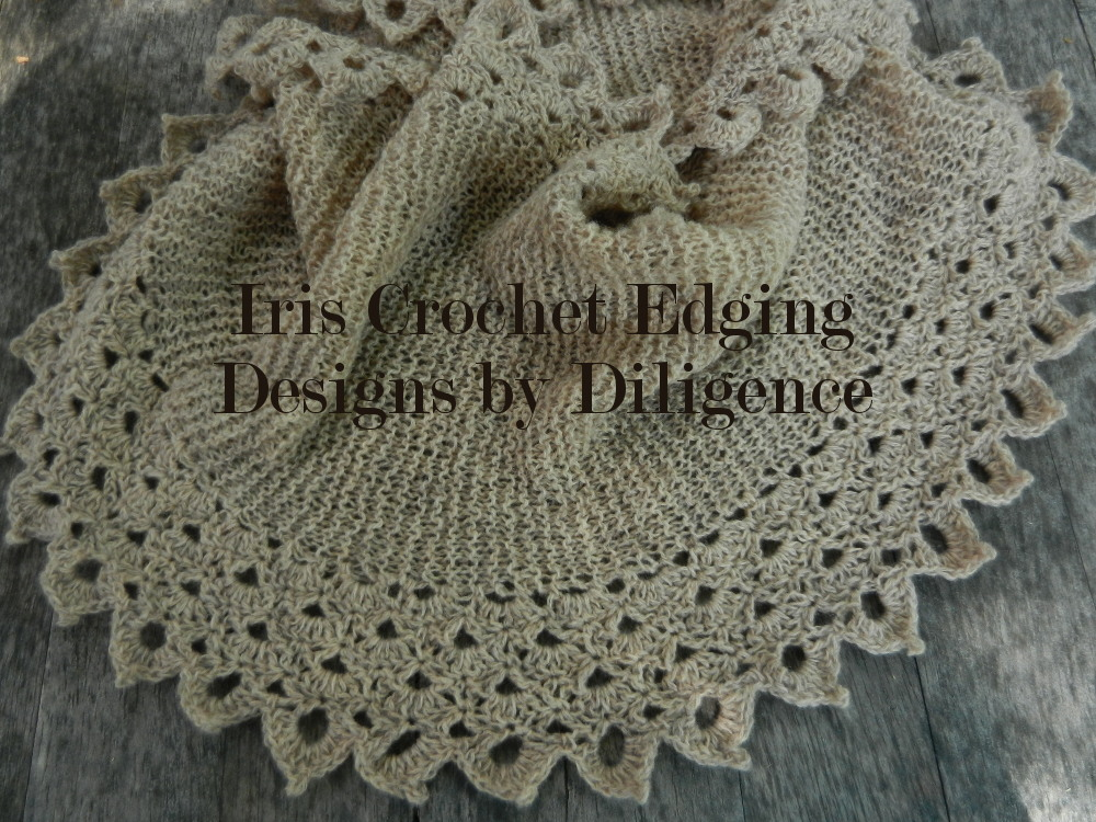 Designs By Diligence Iris Crochet Edging