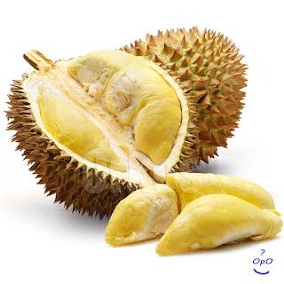 Opo - Manfaat buah durian untuk kesehatan