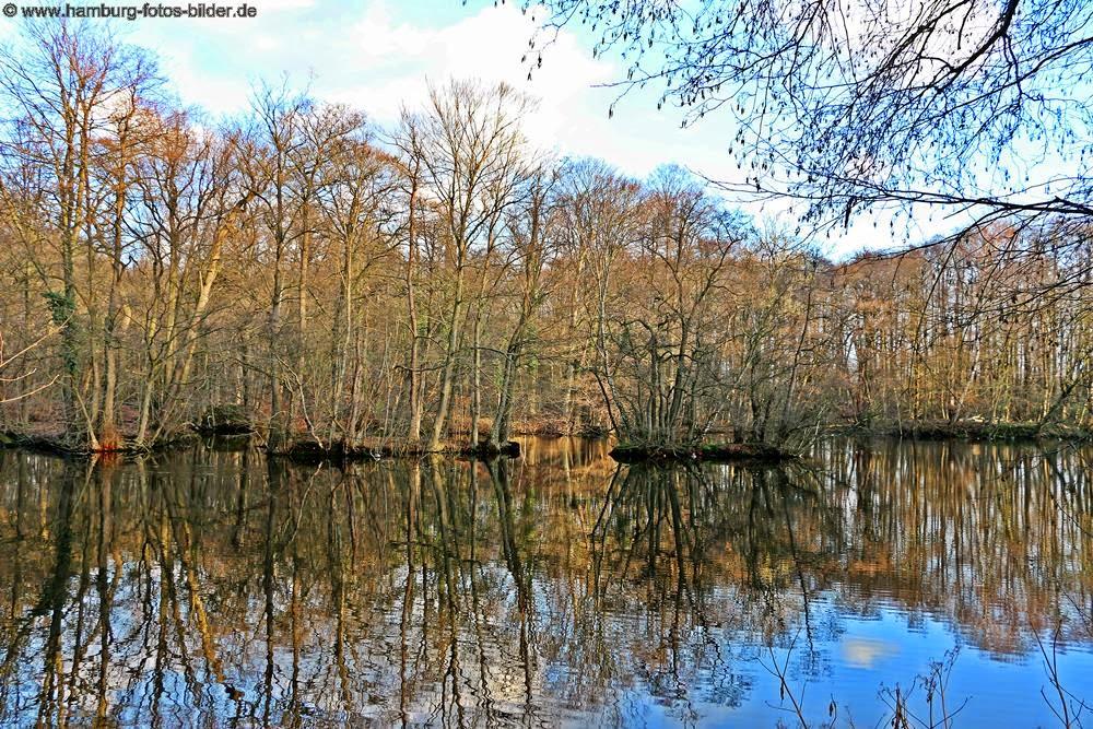 Hamburger Natur, wunderschön der See mit Spiegelung im Rodenbeker Quellental