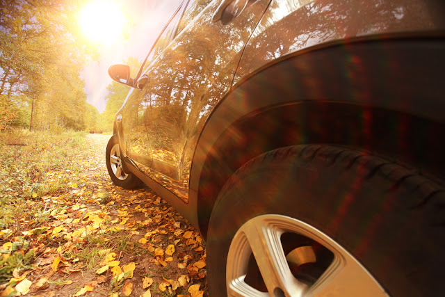 How to Drive Safely in the Fall