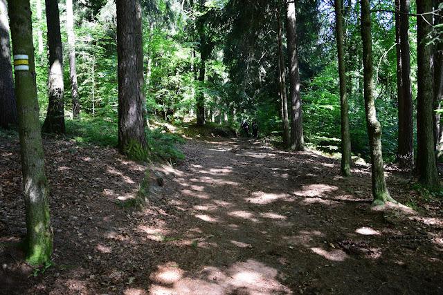 Droga na Vrch Sokol-punkt widokowy na Suche Skały