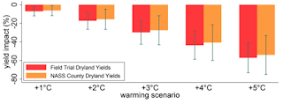 Chart shows how global warming of 1C to 5C above a 1985-2014 average will impact the yield of sorghum (%). Red shows the results for managed field trials at 11 locations across Kansas while orange shows results for data taken from the National Agricultural Statistics Service (NASS). Error bars show the 95% confidence interval. [Source: Tack et al (2017)] Click to Enlarge.