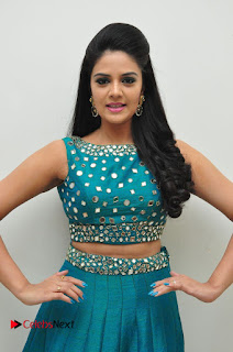 Sree Mukhi Pictures at Gentleman Audio Launch  0047