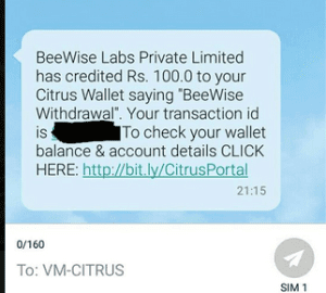 beewise payment proof