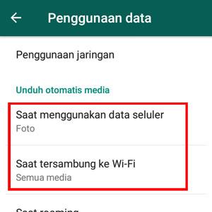 Whatsapp unduh otomatis