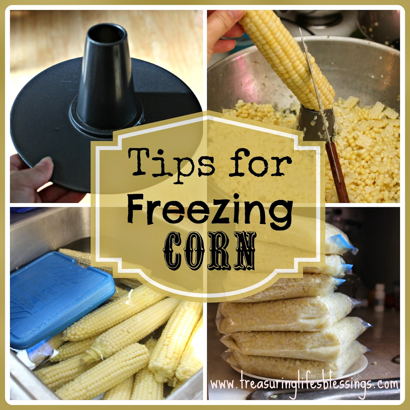 Tips For Freezing Corn