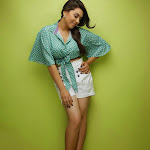 Hansika Motwani Hot Photo Shoot