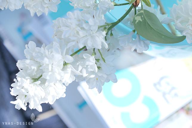 ynas design blog flower friday wenn der wei e flieder wieder. Black Bedroom Furniture Sets. Home Design Ideas
