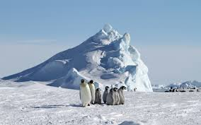 islandia adalah salah satu negara dengan suhu paling dingin di dunia