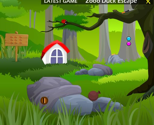 ZoooGames Mountain River …