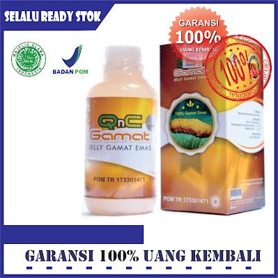 Obat Penyakit Emfisema Herbal