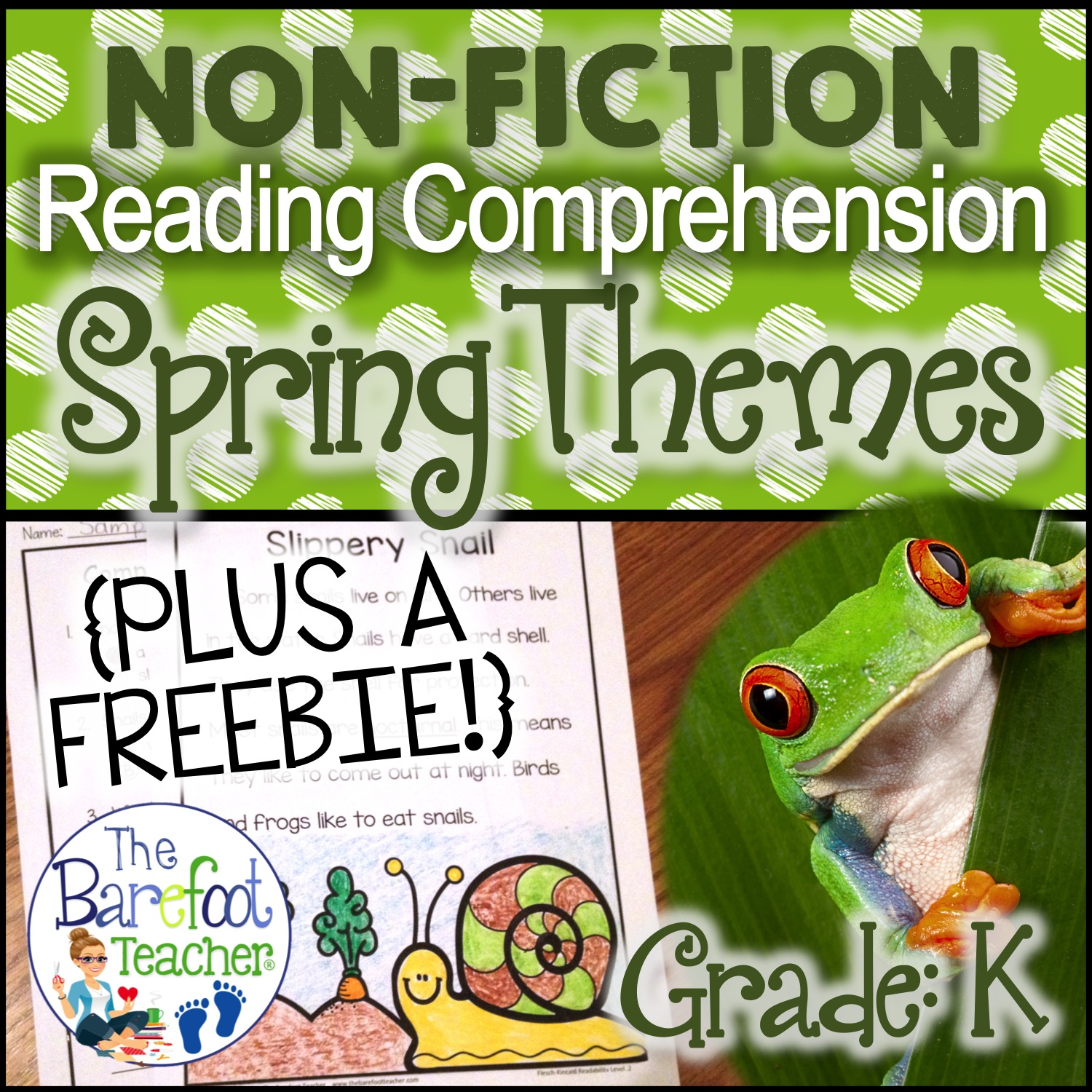 The Barefoot Teacher Spring Themed Reading Comprehension
