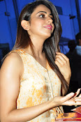 Rakul at Sarrainodu Red Carpet show-thumbnail-6