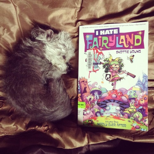 An overhead shot of Murchie, curled up asleep on a bronze comforter. His visible ear is flipped over. Directly beside him is a trade paperback copy of I Hate Fairyland. Its cover features a green-haired white girl wielding an enormous axe. She stands atop a toadstool surrounded by battered fairy tale creatures like teddy bears and talking trees.