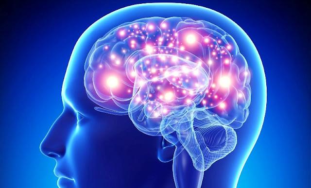 Efek olahraga terhadap otak