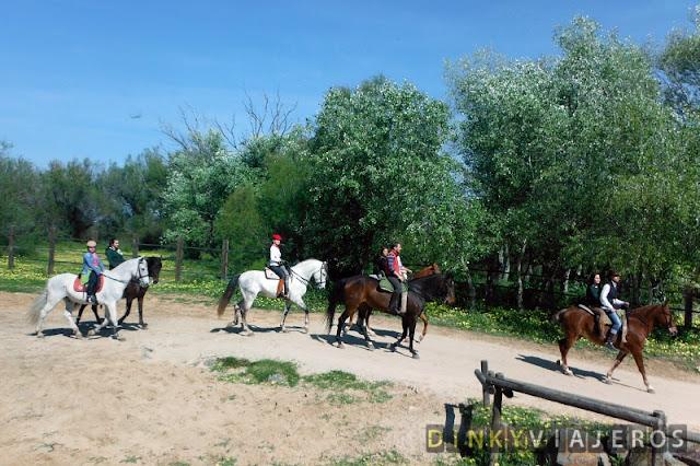 Jinetes paseando por Doñana a caballo