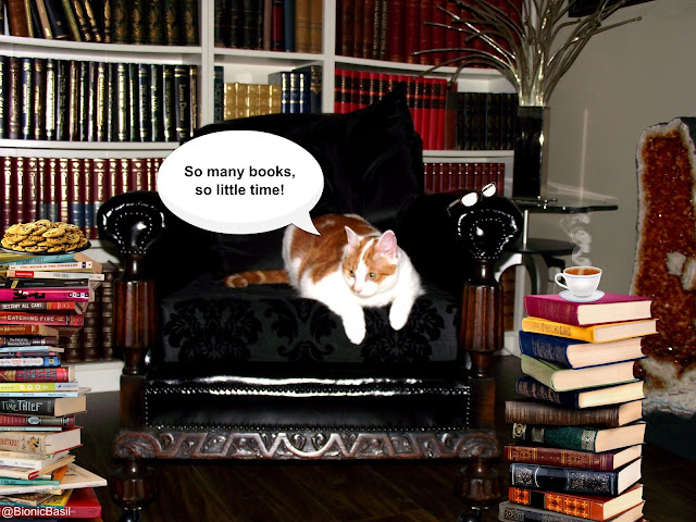 amber bibliokitty Feline Fiction on Friday's with Amber @BionicBasil™