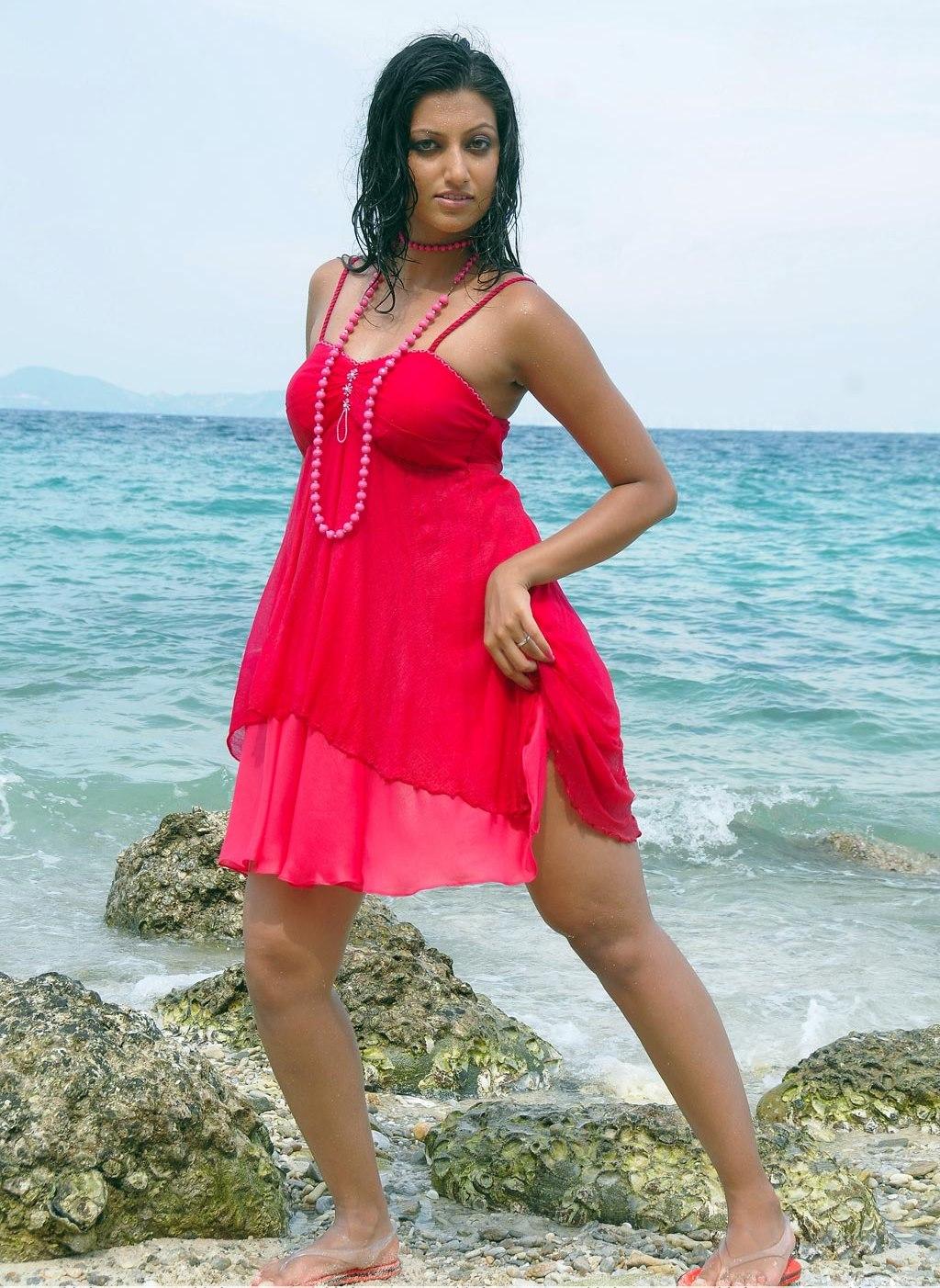 Hamsa Nandini Nude - Hot Girls Pussy-7613